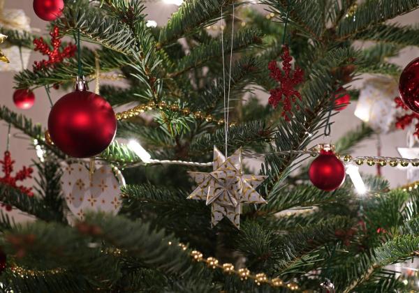 VÝZVA PRO OBČANY  | Výstava Kouzlo Vánoc